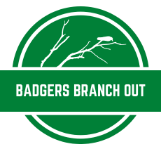 Badgers Branch Out