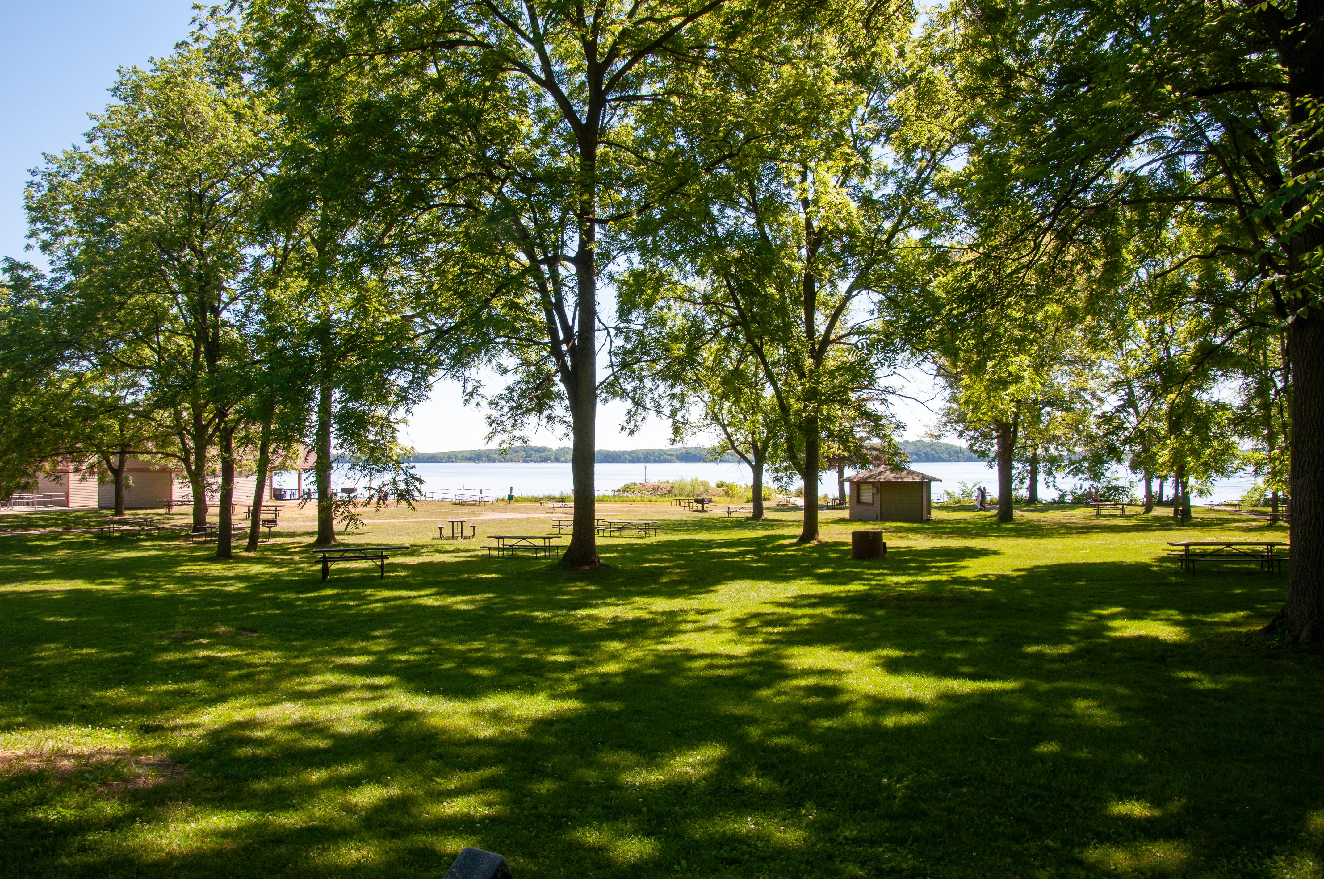 Enjoy a picnic along lake Mendota.