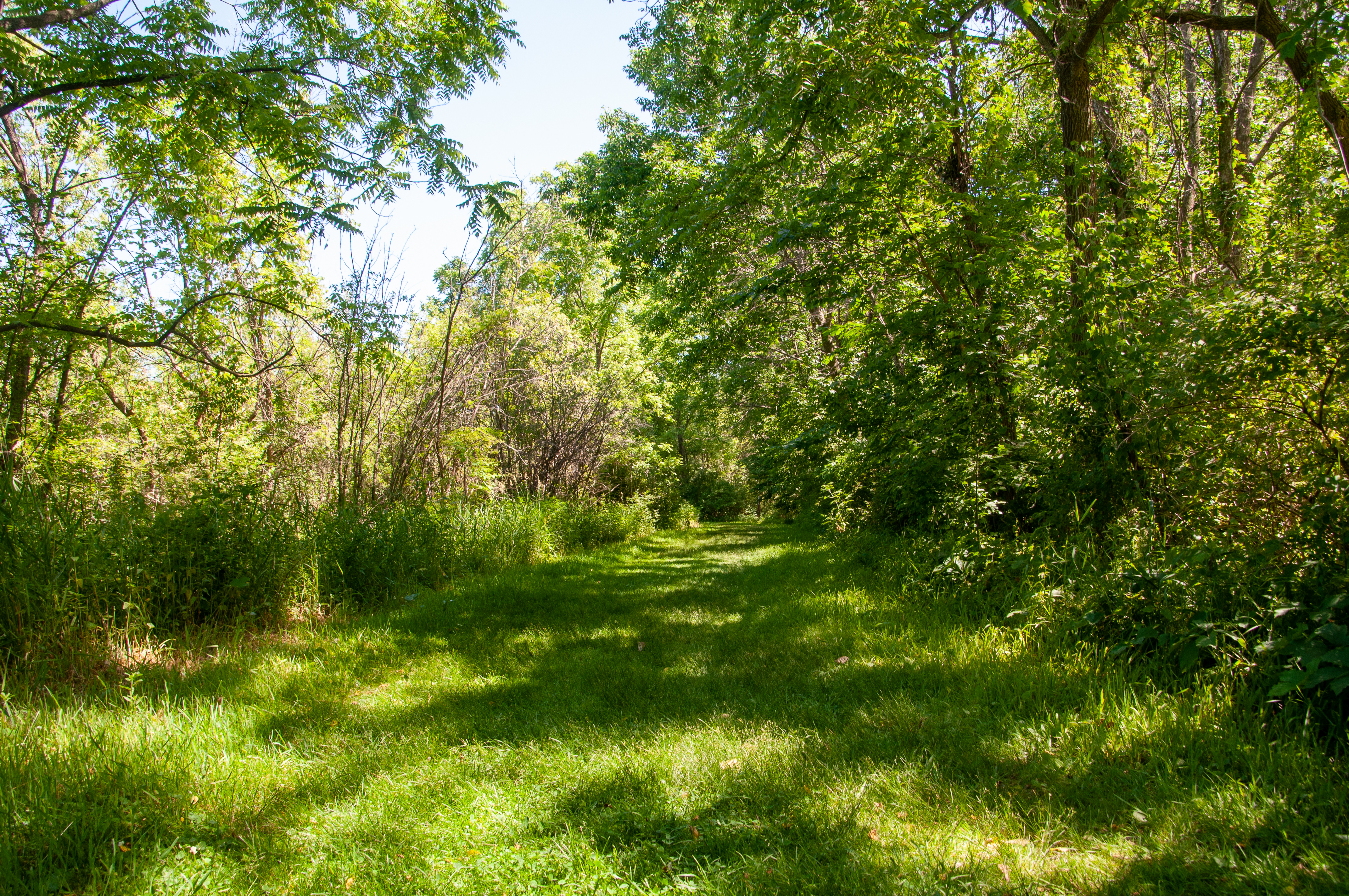 Go for a hike along 8 miles of trails at Governor Nelson State Park.