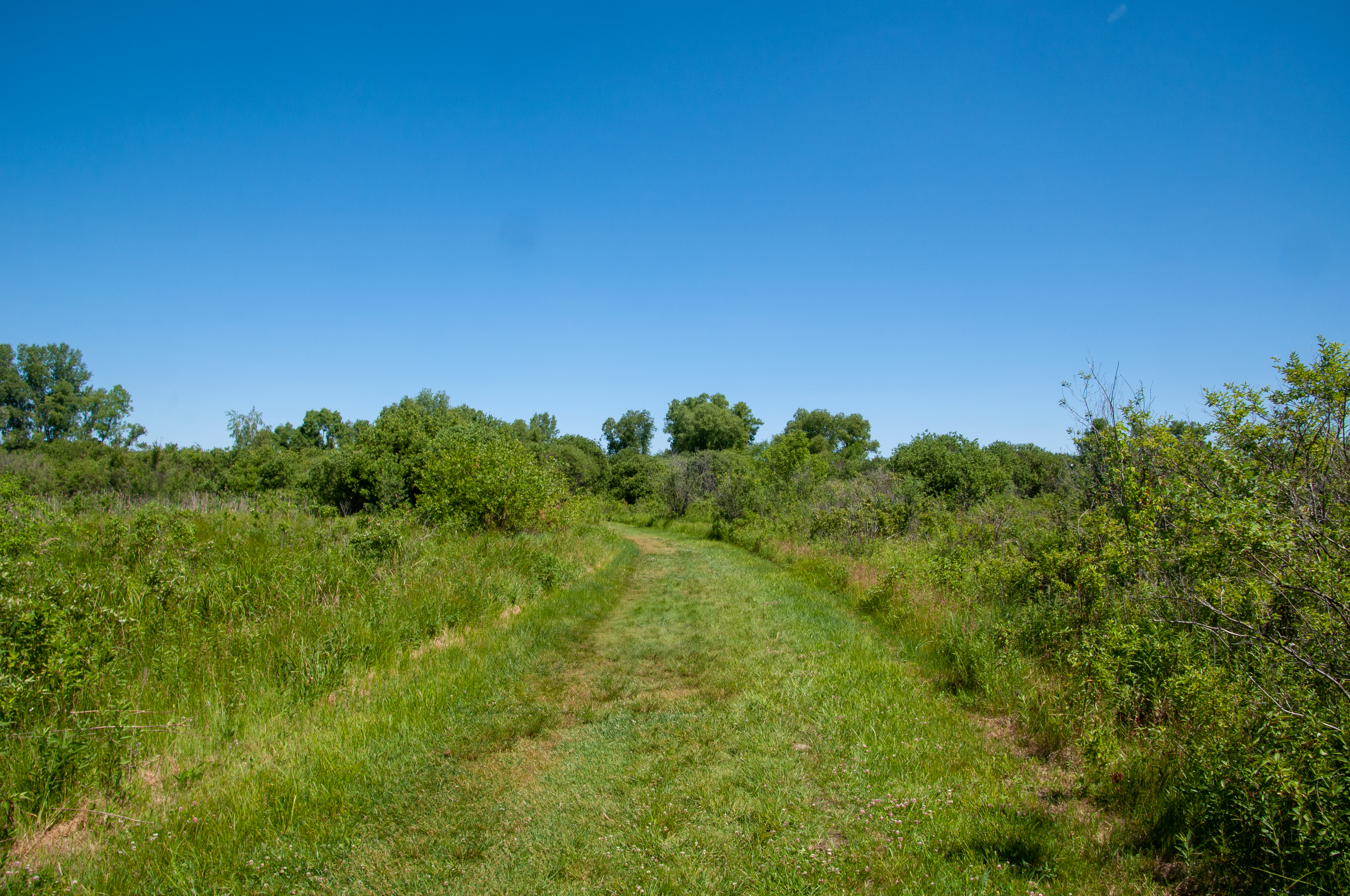 Go for a hike at Governor Nelson State Park